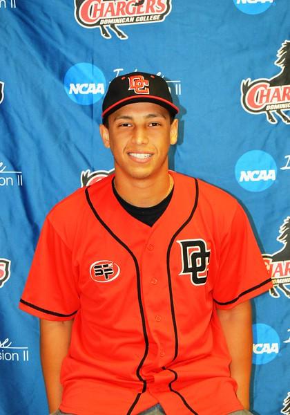 2014-2015 Dominican College Baseball
